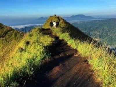 Mount Batur Daylight Trekking Tour